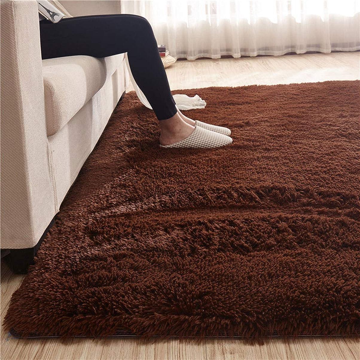事故つかまえる学士カーペット 200*200cm (約2.6畳) ラグマット 洗える 「Moras」 厚い 長方形 絨毯 防音 抗菌 消臭 防ダニ 滑り止め付き 北欧 センターラグ ブラウン