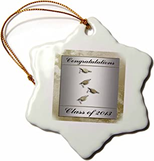 3dRose orn_43443_1 Class of 2013 Caps with Tassels Silver and Gold Congratulations Snowflake Decorative Hanging Ornament, Porcelain, 3-Inch