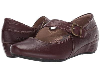 Taos Footwear Option (Brunette) Women