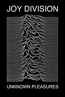 Poster Joy Division - Unknown Pleasures, 24in x 36in