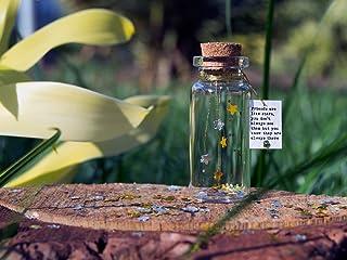 Los amigos son como las estrellas... Sé tu mismo. Be you. Mensaje en una botella. Miniaturas. Regalo personalizado. Divert...