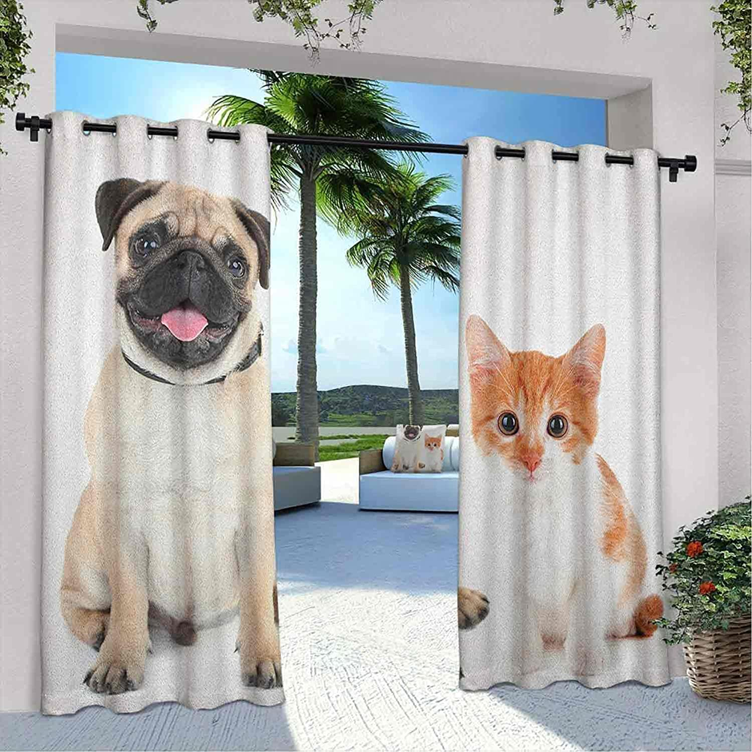 Printed Outdoor Special Campaign Max 68% OFF Pug Curtain Adorable and Kitten Photograp Puppy