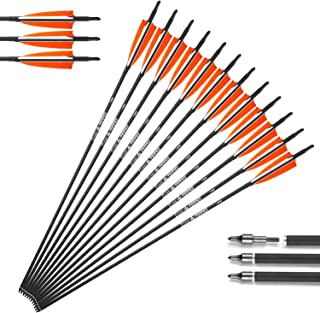 XGeek 30in Carbon Arrows Shafts,Practice Arrows for Target Shooting,Compound Bow & Recurve Bow Arrows for Hunting, 4 Inch Shield Turkey Feathers Fletching & Removable Points Tips