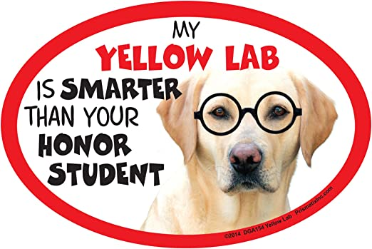 YELLOW LABRADOR RETRIEVER Non Pet Owner Magnet