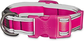 Good2Go LED Light-Up Collar for Dogs in Pink