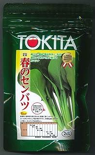 トキタ種苗 野菜の種 小松菜 春のセンバツ 2dl