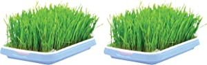Seed Sprouter Trays (Set of 2) for Microgreens Multiple Type Seeds with Grid Mesh and Water Storage Container, PP Food-Grade, BPA Free, High Capacity for Outdoor Indoor Home Nursery Grower (Blue)