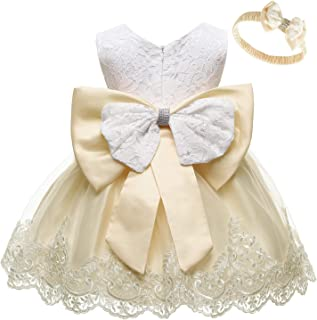 Baby Girls Formal Dresses Infant Bowknot Embroidery Tutu Lace Gown Dress
