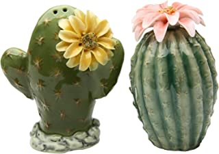 StealStreet SS-CG-20893, 3.13 Inch Painted Pair of Cactus Flowers Salt and Pepper Shakers