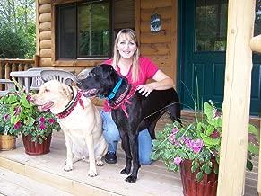 Pet Sitting Service Start Up Sample Business Plan!