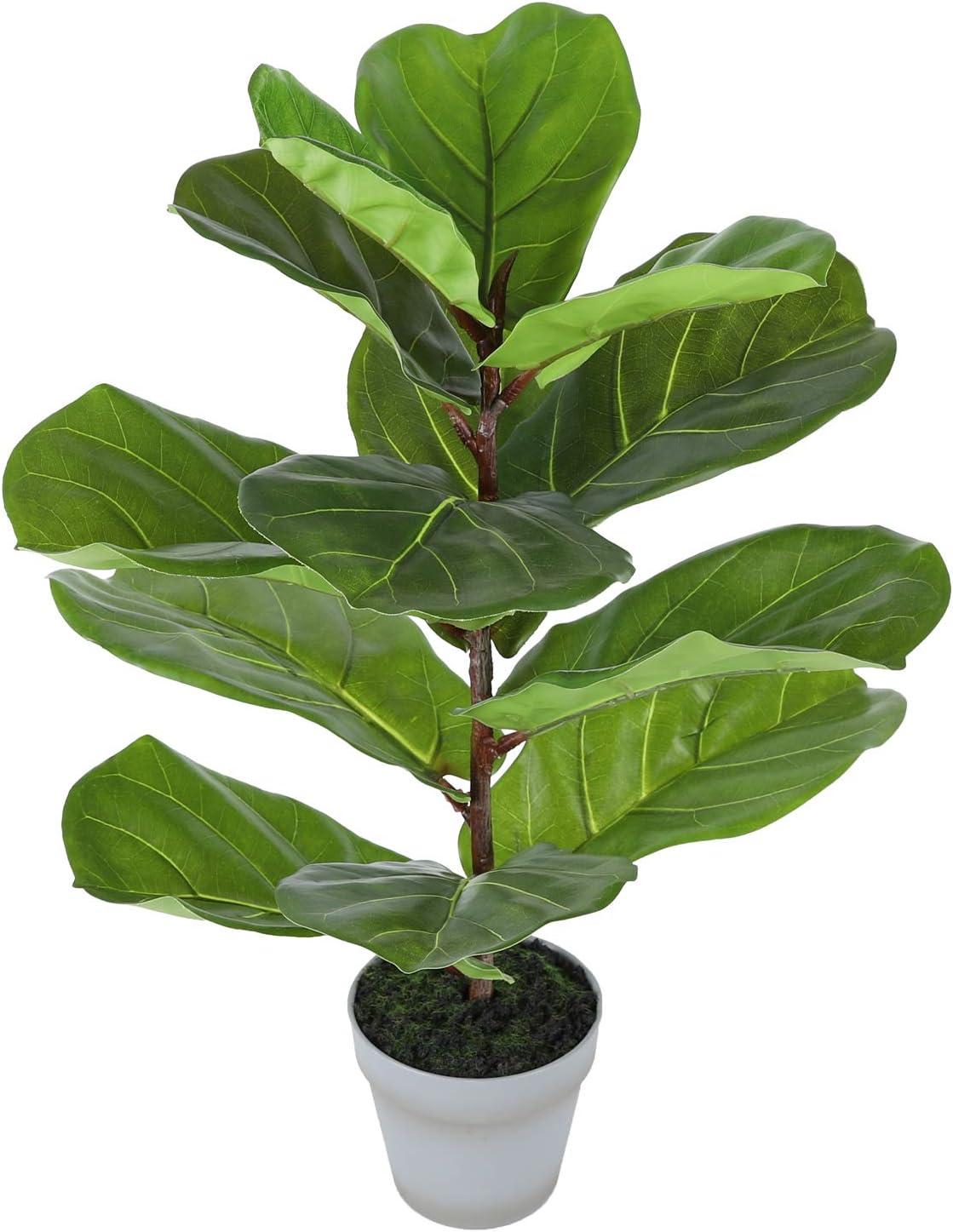 特売 Artificial Fiddle Leaf Fig Tree Fake Lyrata 訳あり品送料無料 25 Faux Ficus Plant