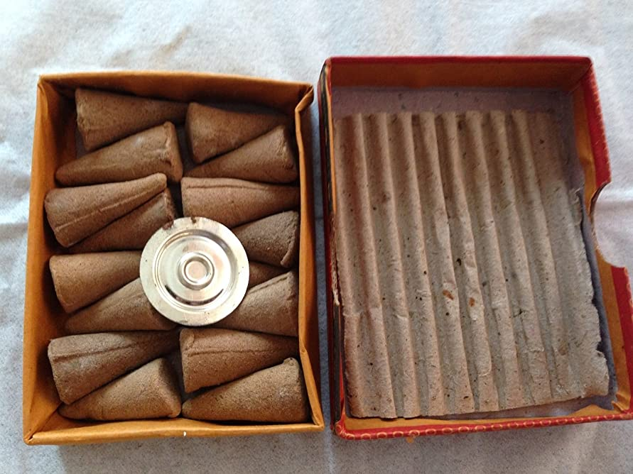 魅力的であることへのアピール物語請負業者インドのお香 NAMASTEJI (コーン香) インセンス 16個入り (PINE(パイン/松)) [並行輸入品]