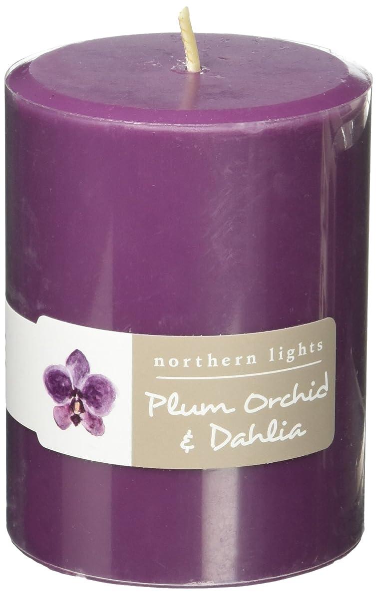カレッジ肥沃な衰えるNorthern Lights Candles Plum Orchid &ダリアFragranceパレットPillar Candle、3?x 4?