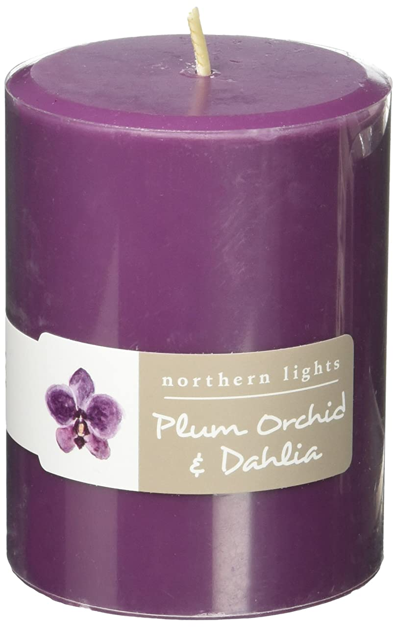 欠伸食事限界Northern Lights Candles Plum Orchid &ダリアFragranceパレットPillar Candle、3?x 4?