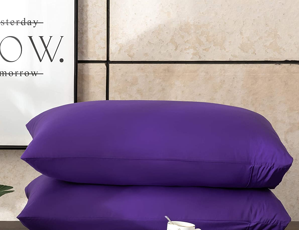 AYASW Pillowcases Queen Size 1500 Thread Microfiber 2 Piece Set, Envelope Closure Soft- Purple 20x30 inches