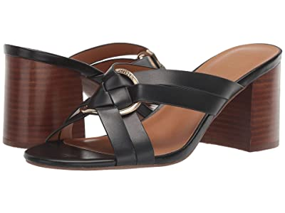 Tommy Hilfiger Enna (Black) Women