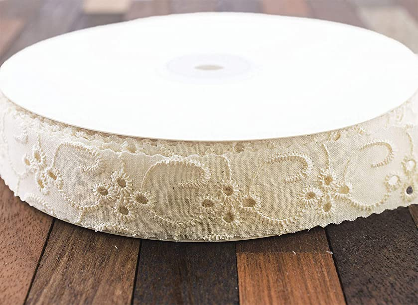 Summer-Ray 25 Yards Ivory Cotton Eyelet Lace Ribbon Trim 1 Inch (Design 2) Sewing Craft Project