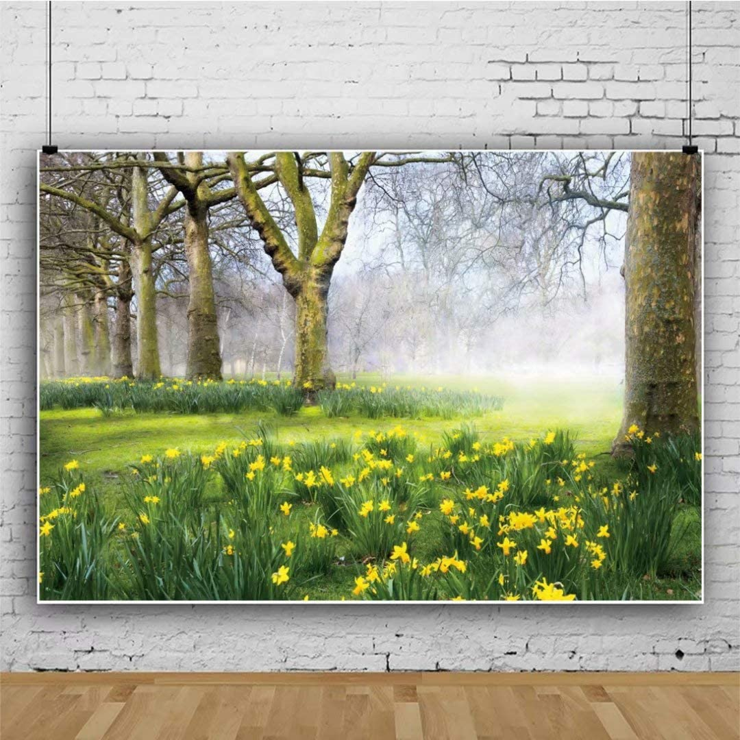New Spring Flowers Backdrop 7x5ft Park Scenery Photos Background Green Meadow Girls Spring Shoots Kids Birthday Decoration Toddlers Boys Shoots Bridal Shower Video Props