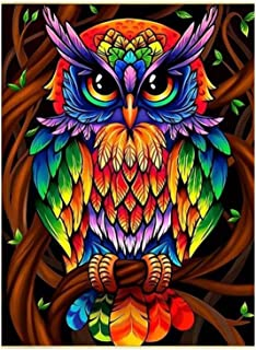 5D Diamond Painting Kits for Adults, Kids. Office Decoration, Room, Home,Art Craft Colorful Owl 16x20in by Ueyoo