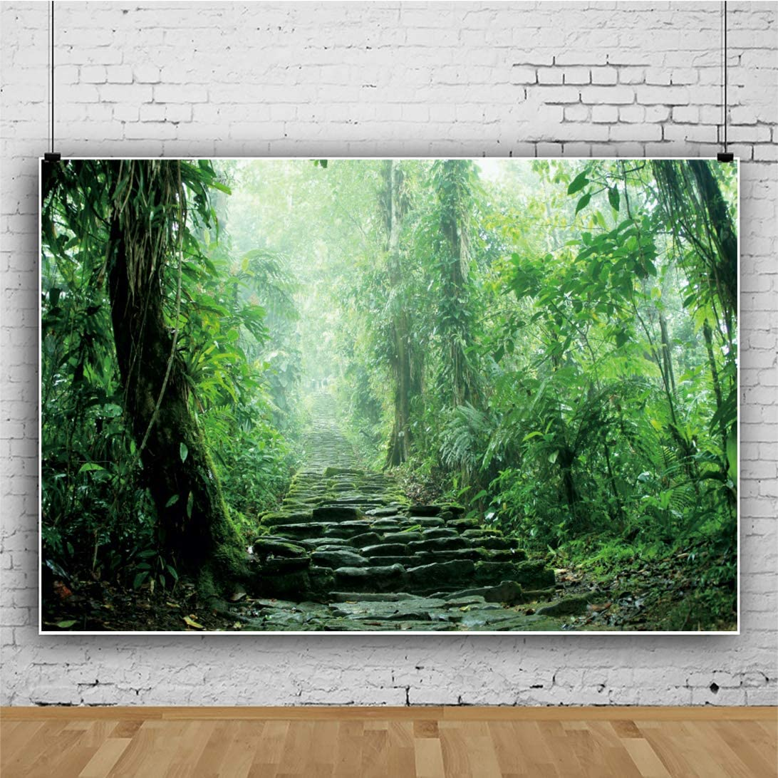 OERJU 5x4ft Forest Backdrop Mossy Stone Steps Background for Photoshoot Kids Boys Girls Adults Artistic Adventure Portrait Photo Studio Booth Props Vlog Shooting Video Making Vinyl Wallpaper