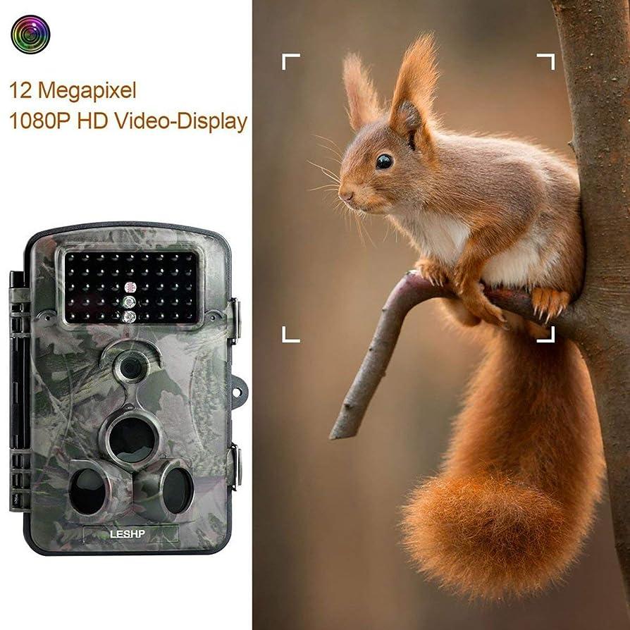 うなり声ブルゴーニュ信者Game Trail Hunting Camera 12MP 1080P HD 120°Wide Angle Infrared Night Vision 42pcs IR LEDs 2.4 Inch LCD Screen Camera RD1000