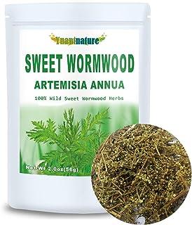 Dried Artemisia Annua, Artemisia Herbs, 100% Sweet Wormwood (2.0 oz)