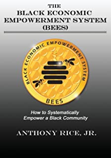 The Black Economic Empowerment System (BEES): How to Economically Empower A Black Community