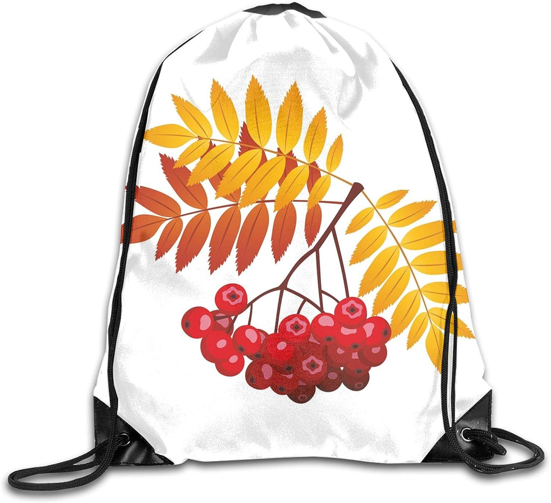 Realistic Vivid Ripe Berries In Purchase Fall Chicago Mall Leaves Rural Season Orange
