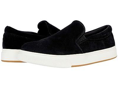 Steve Madden Coulter Sneaker (Black Suede) Women