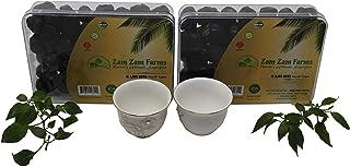 2 Pack of Zam Zam Al Ajwa Dates Imported from Saudi Arabia 2X400g