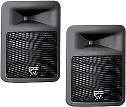 (2) Peavey PR 12D Pro Audio DJ 12