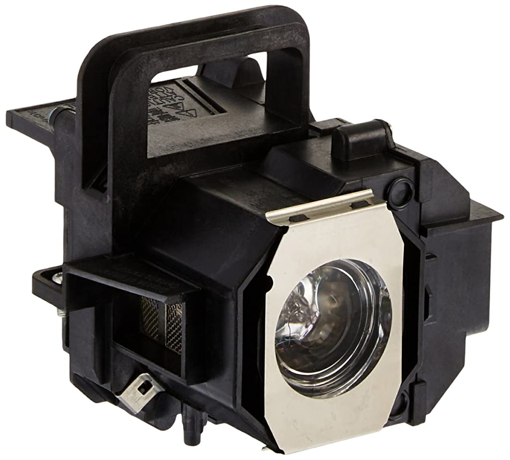 EPSON ELPLP49 Projector Replacement Lamp with Housing