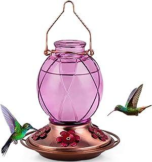 BOLITE 18016-P Hummingbird Feeder, Glass Hummingbird Feeder for Outdoors, Netted Texture Ball Shape Bottle, 18 Ounces, Lav...