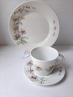 MaJe ceramista juego de café esmaltado porcelana pintada a mano pensamientos.