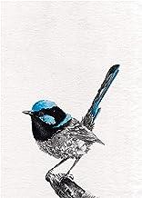 Maxwell & Williams Marini Ferlazzo Birds theedoek, bedrukt, motief feeënomheining, 100% katoen, 50 x 70 cm, zwart/wit