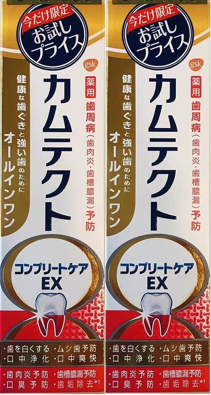 プラスチック血まみれ召集する【まとめ買い2個】カムテクトコンプリートケアEX
