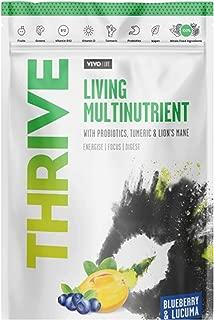 Vivo Life - Thrive Living Multinutrient Vegan Superfood Powder, Blueberry and Lucuma, 240gr