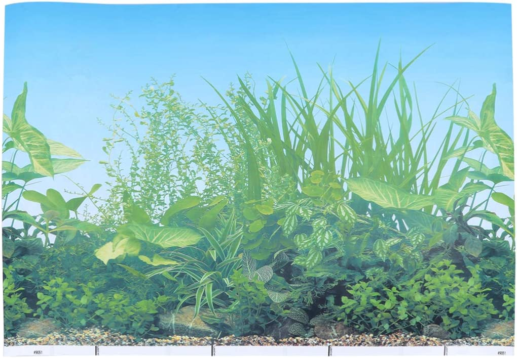 POPETPOP Aquarium Max 49% OFF Background Fish Double-Sided Decorations Tank In stock