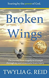 Broken Wings: The journey from tragedy to triumph through my son's traumatic brain injury.