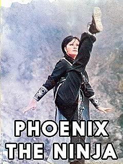 Phoenix The Ninja