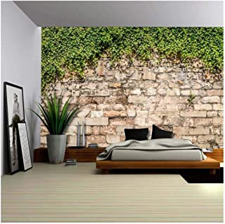 wall26 - Green Vines Draping from an Old Brick Wall - Wall Mural, Removable Wallpaper, Home Decor - 100x144 inches