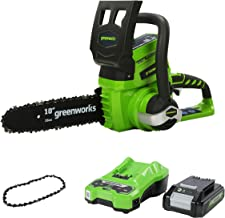 Greenworks Tools 2000007UA/20097T Cordless Chainsaw with 2 Ah Battery and Charger, 24 V, Green, 25 cm+Greenworks 25cm (1...