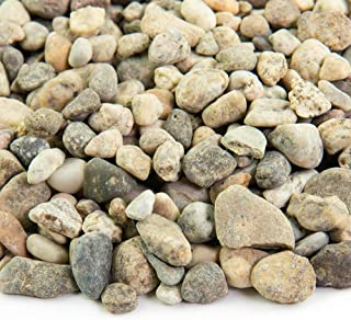 Southwest Boulder & Stone Landscape Rock and Pebble | 20 Pounds | Natural, Decorative Stones and Gravel for Landscaping, Gardening, Potted Plants, and More (Del Rio, 3/8 Inch)