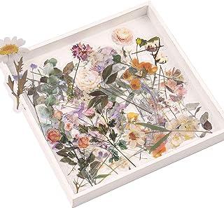 Lot d'autocollants de Fleurs et de Plantes, NogaMoga Pet Stickers Décoratifs Transparents, 6 Thèmes de la Nature Autocolla...