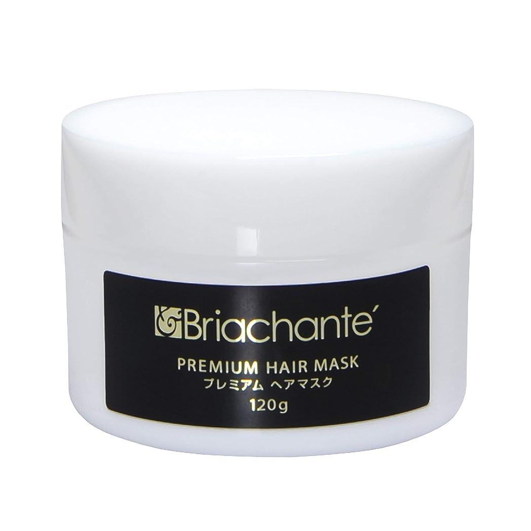 平行今みすぼらしいブリアシャンテ プレミアムヘアマスク <頭髪用保湿パック> 120g