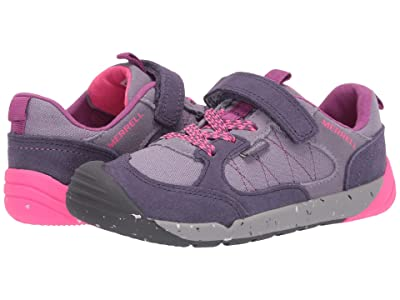 Merrell Kids Bare Steps Alpine Sneaker (Little Kid) (Dusty Purple) Girl