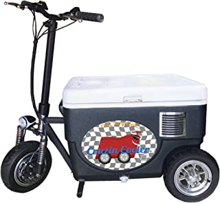 Best gas powered riding coolers Reviews