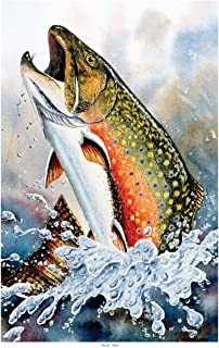 Brook Trout Travel Art Print Poster by Dave Bartholet (12