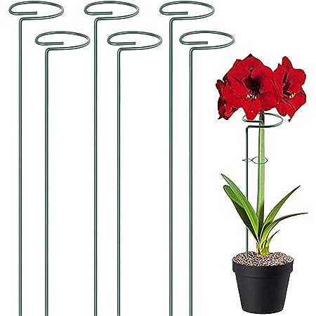 6 Piezas Estaca de Apoyo Metal Estacas de Flores Estaca de Soporte Estacas de Soporte para Plantas para Plantas Flor Rosa Tomate Lirio Peonía (40cm)