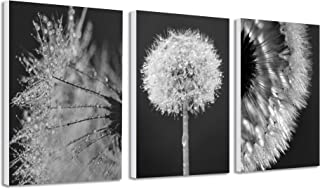 Bedroom Art Canvas Wall Art Dandelion Black and white Paint Picture for Living Room Flower Flora Home Bedroom Decoration Modern Framed Artwork Ready to Hang for Home Decoration Kitchen Office Wall Dec